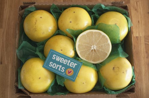 SweeterSorts White Grapefruit carton ready to be shipped
